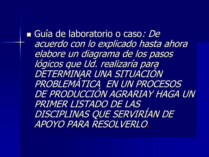 Guía de laboratorio o caso