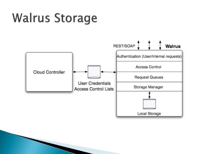 Walrus Storage