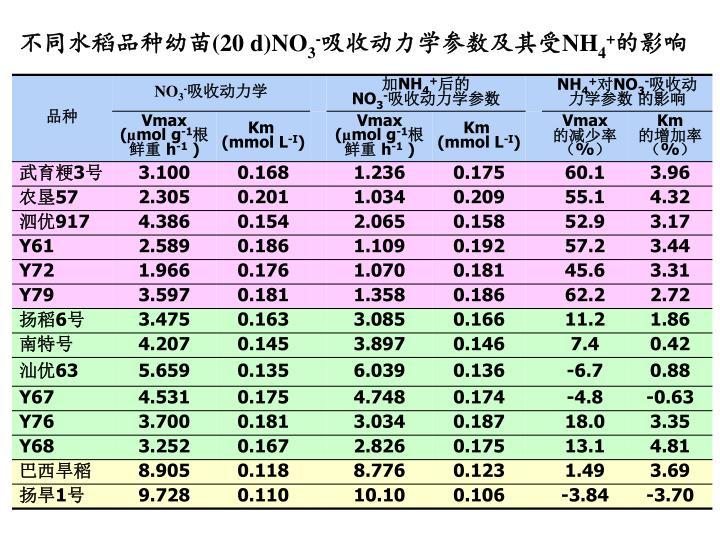 不同水稻品种幼苗