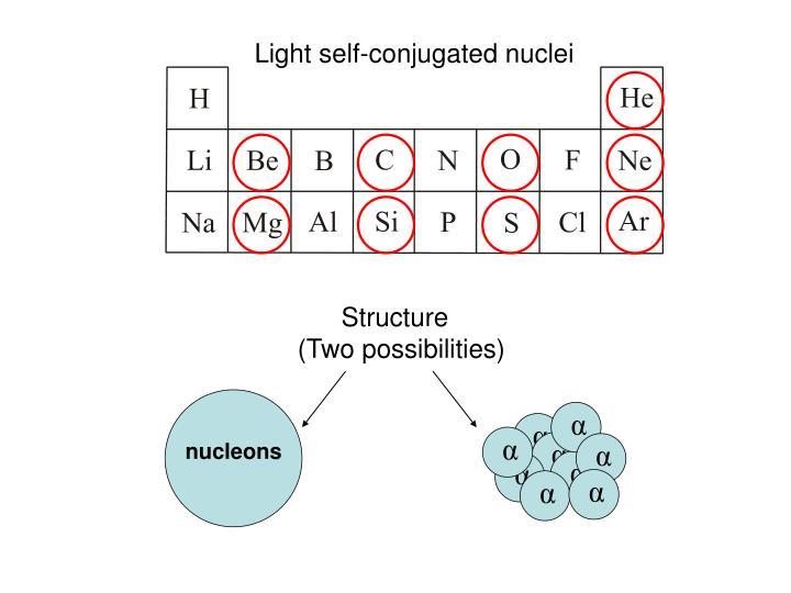 Light self-conjugated nuclei