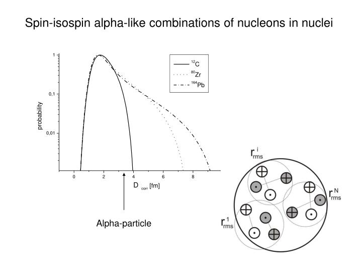 Spin-isospin alpha-like combinations of nucleons in nuclei