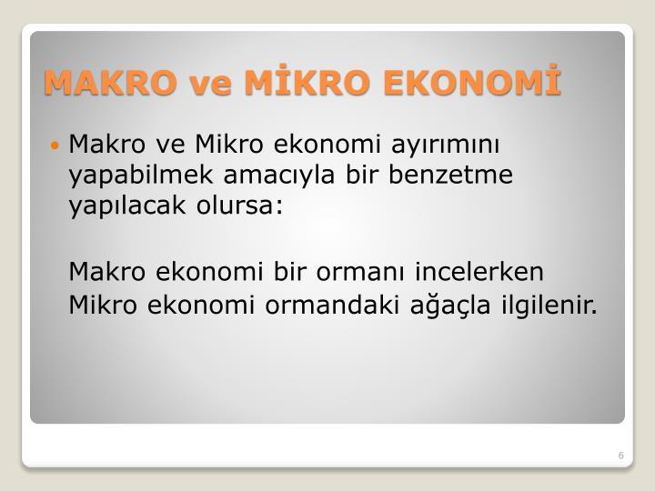 Makro ve Mikro ekonomi ayırımını yapabilmek amacıyla bir benzetme yapılacak olursa: