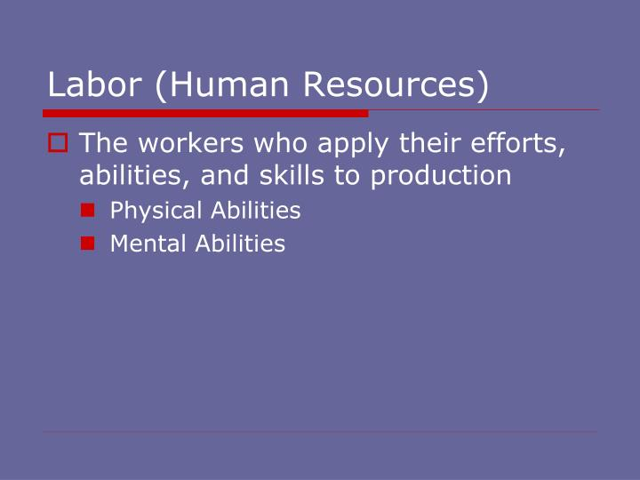 Labor (Human Resources)
