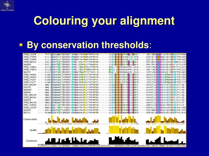 Colouring your alignment