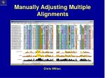 manually adjusting multiple alignments