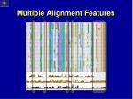 multiple alignment features3