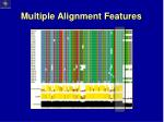 multiple alignment features5