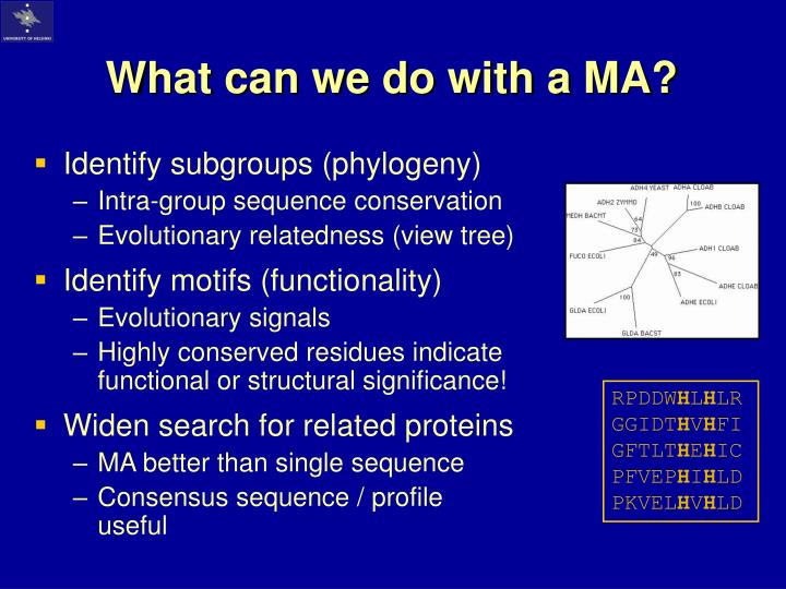 What can we do with a MA?
