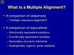 what is a multiple alignment
