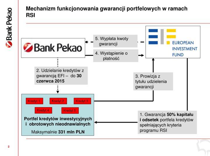Mechanizm funkcjonowania gwarancji portfelowych w ramach RSI
