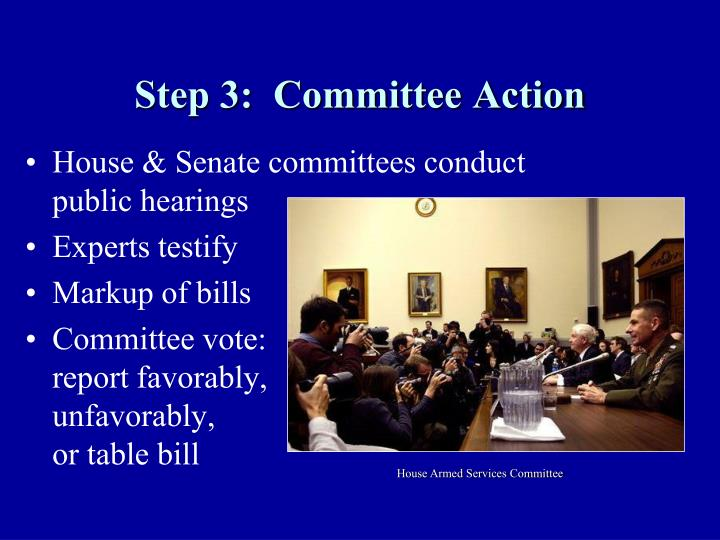 Step 3:  Committee Action