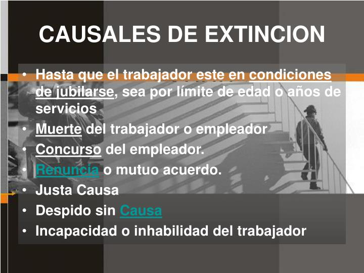 CAUSALES DE EXTINCION