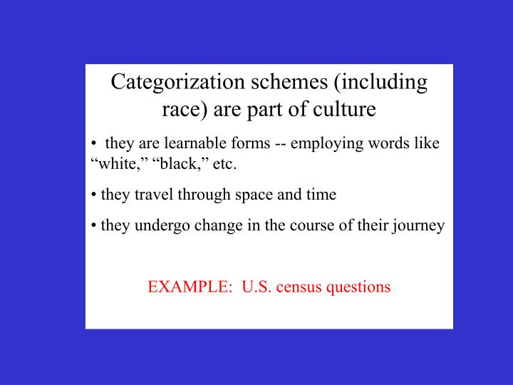 Categorization schemes (including race) are part of culture