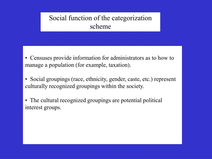 Social function of the categorization scheme