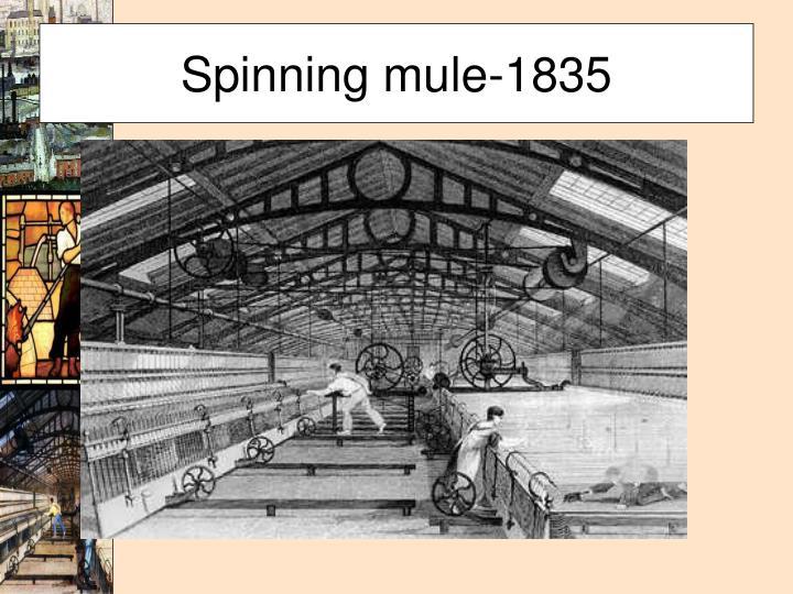 Spinning mule-1835