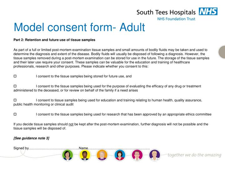Model consent form- Adult