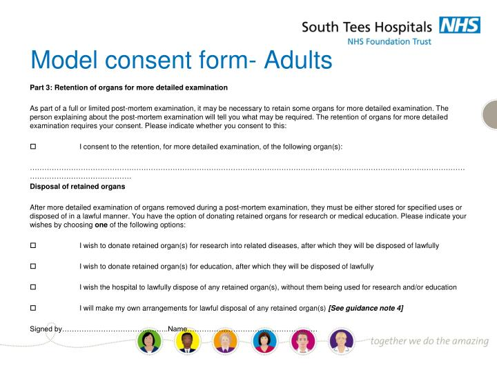 Model consent form- Adults