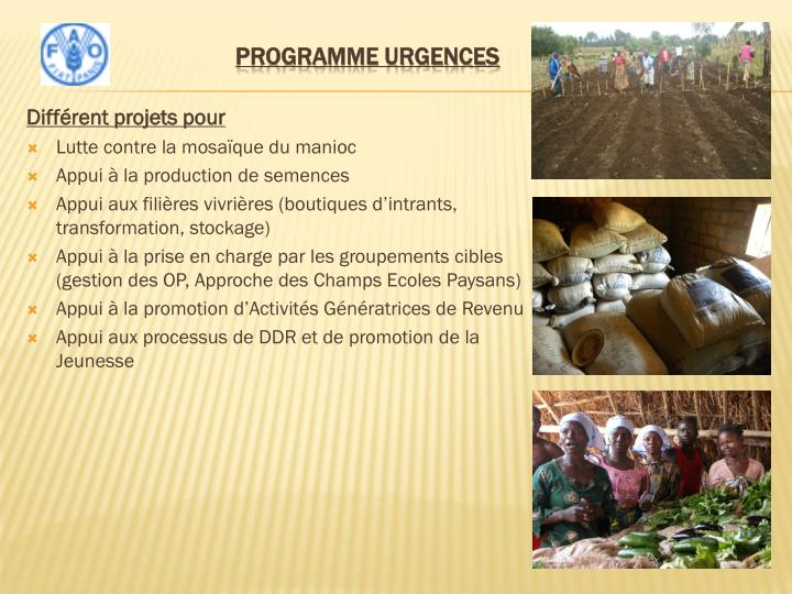 Programme urgences