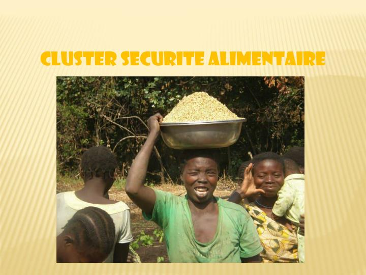 CLUSTER SECURITE ALIMENTAIRE