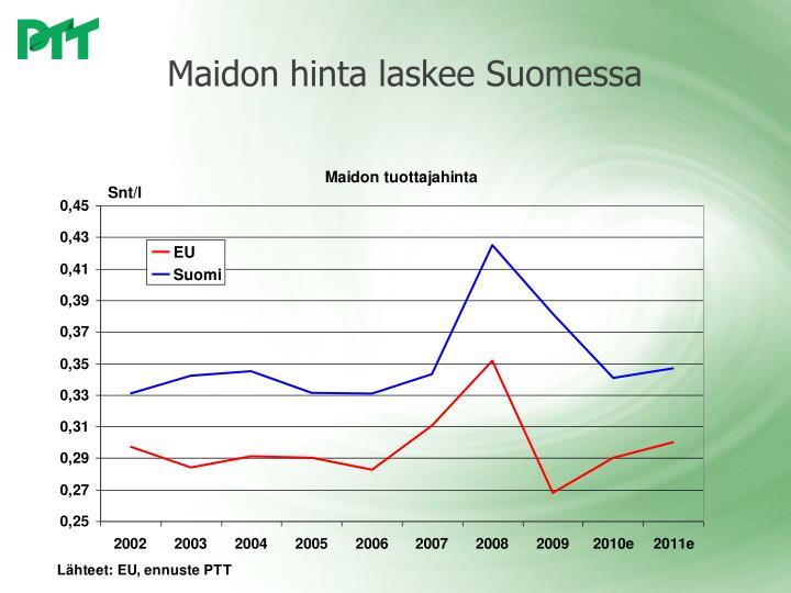 Maidon hinta laskee Suomessa