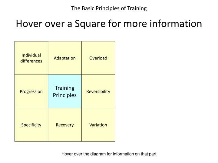 The Basic Principles of Training