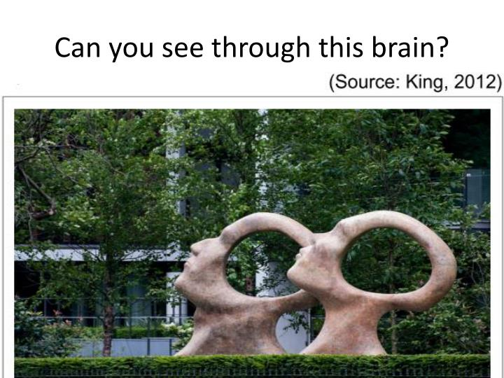 Can you see through this brain?