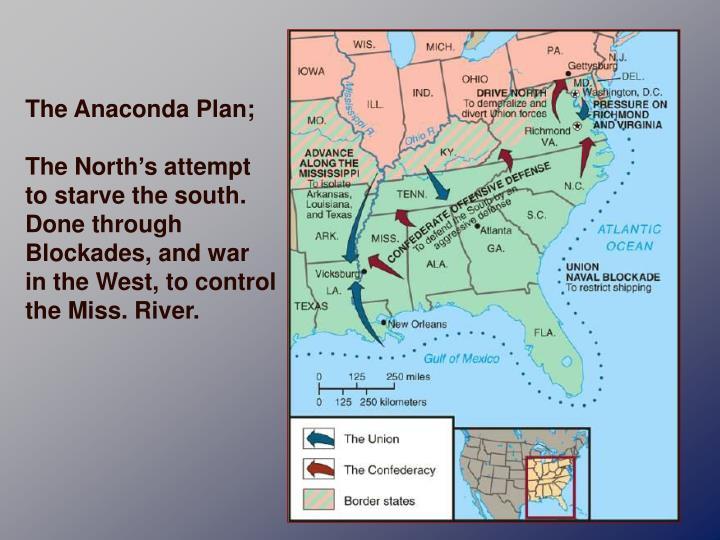The Anaconda Plan;