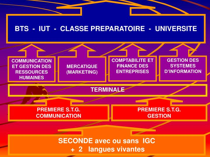 BTS  -  IUT  -  CLASSE PREPARATOIRE  -  UNIVERSITE