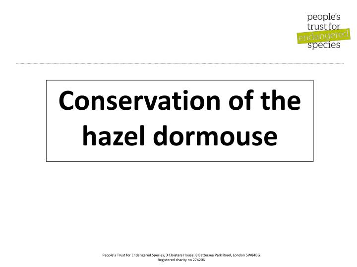 Conservation of the hazel dormouse