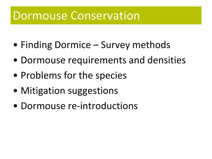 Dormouse conservation