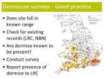 dormouse surveys good practice