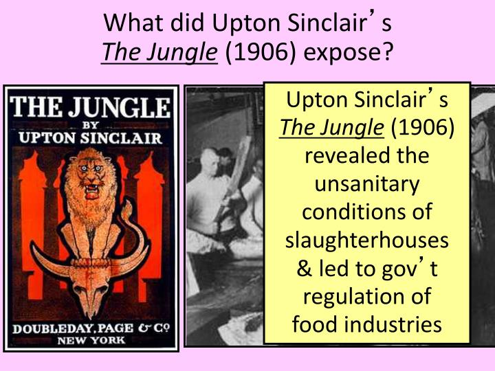 What did Upton Sinclair