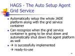 hags the auto setup agent grid service