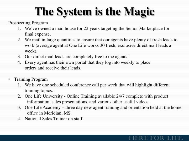 The System is the Magic