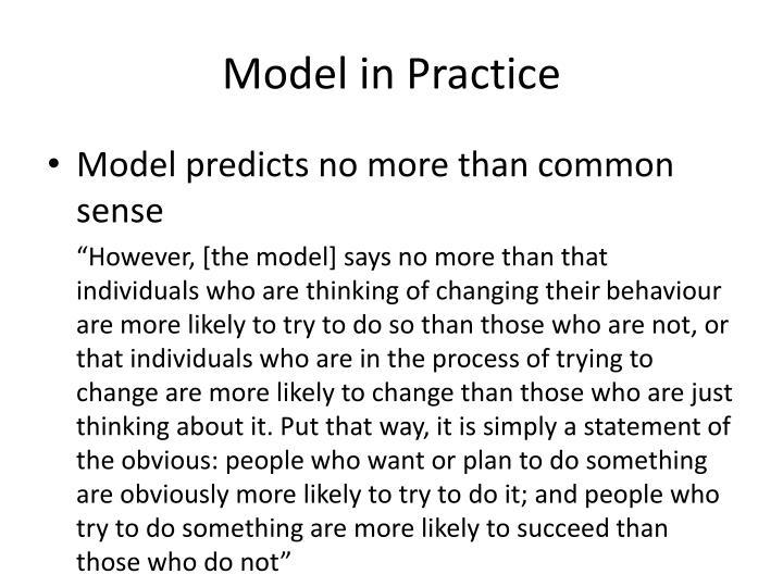 Model in Practice