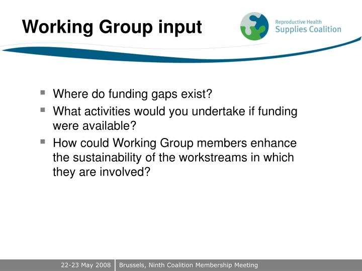 Working Group input