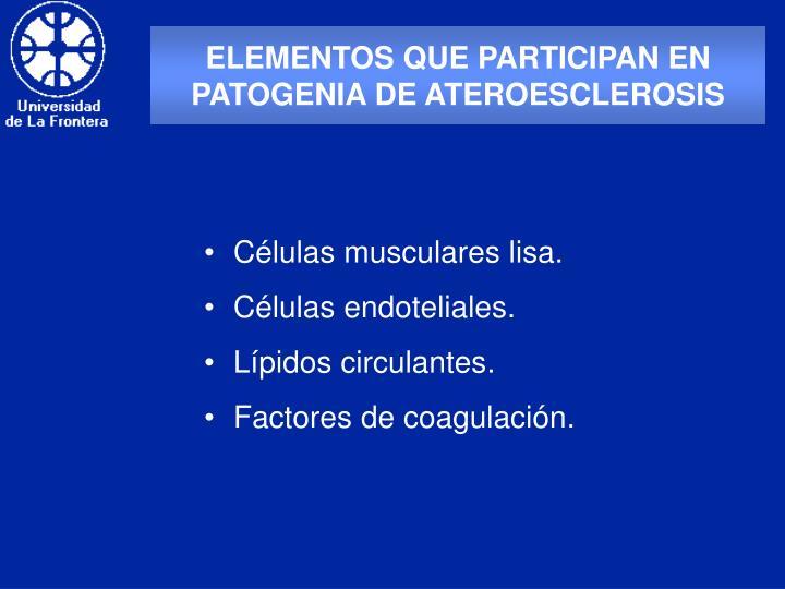 ELEMENTOS QUE PARTICIPAN EN PATOGENIA DE ATEROESCLEROSIS