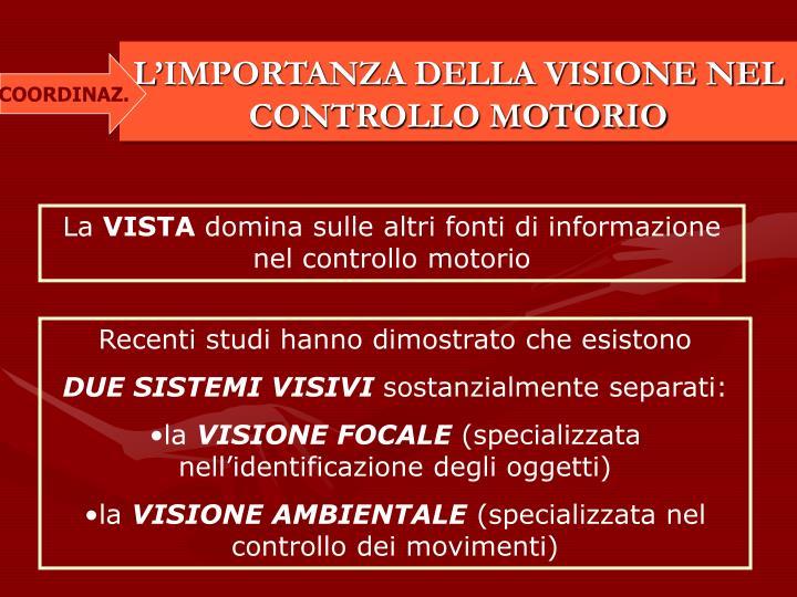 LIMPORTANZA DELLA VISIONE NEL CONTROLLO MOTORIO