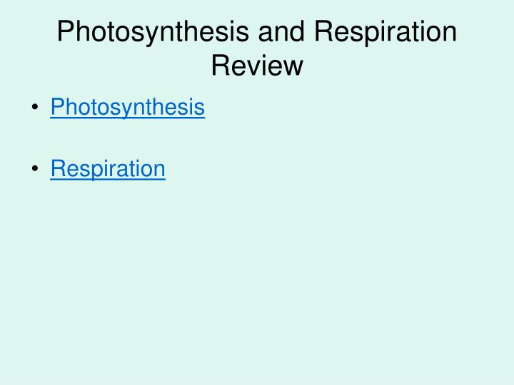 Photosynthesis and Respiration Review