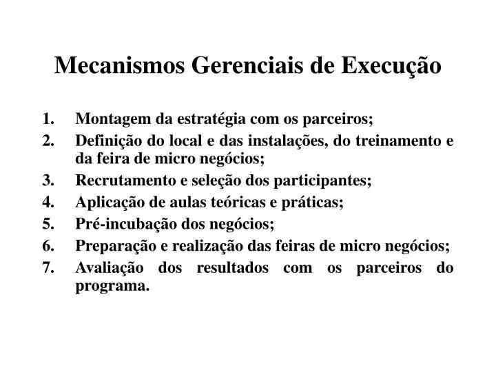 Mecanismos Gerenciais de Execução