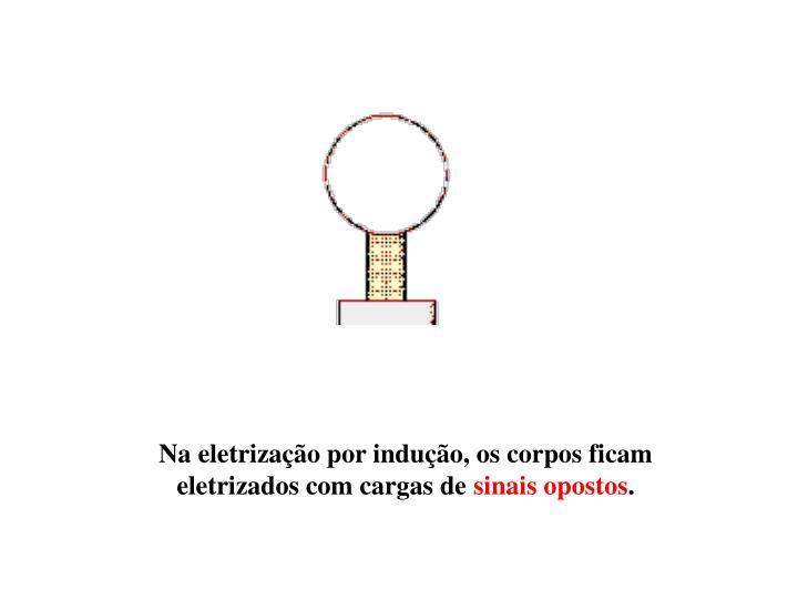 Na eletrização por indução, os corpos ficam eletrizados com cargas de