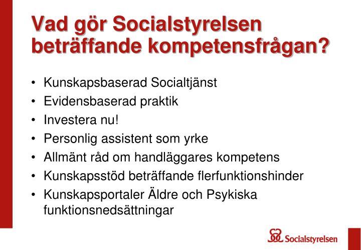 Vad gör Socialstyrelsen beträffande kompetensfrågan?