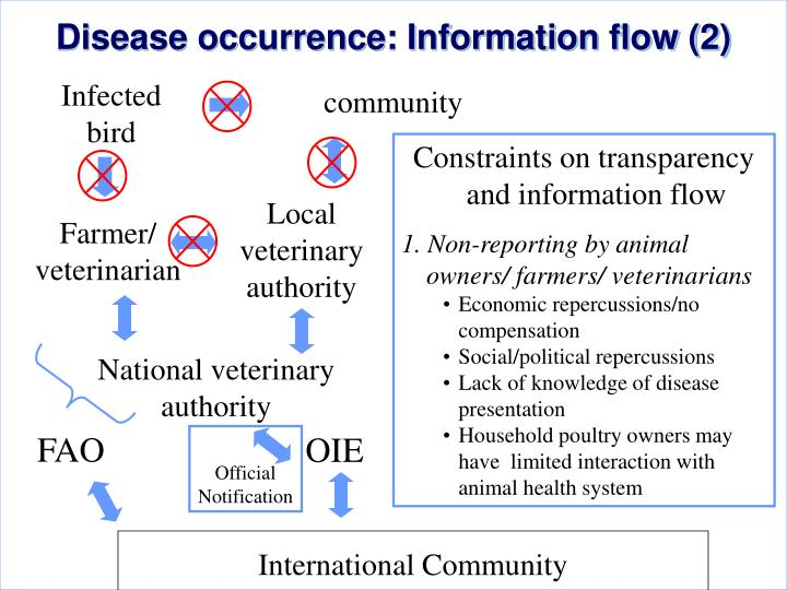 Disease occurrence: Information flow (2)