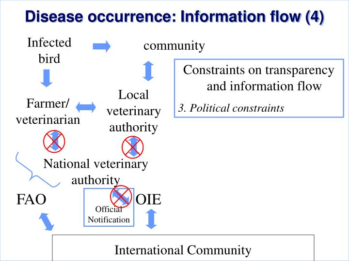 Disease occurrence: Information flow (4)
