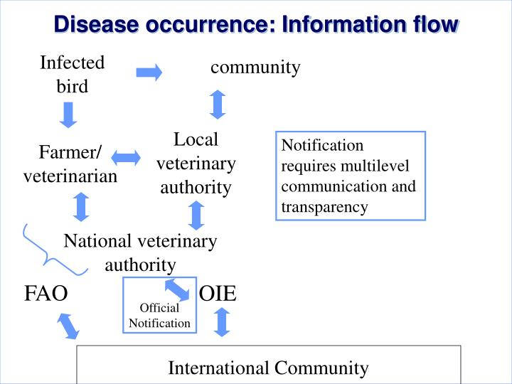 Disease occurrence: Information flow