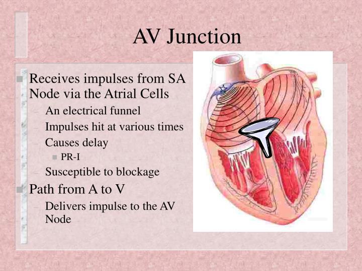 AV Junction