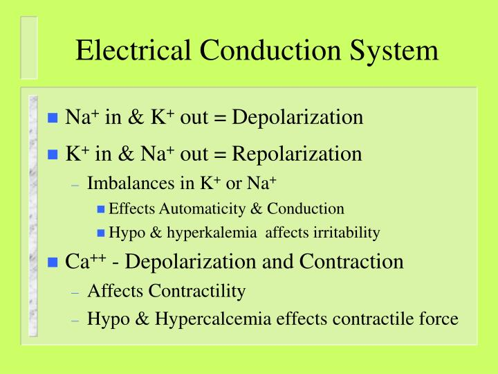 Electrical Conduction System