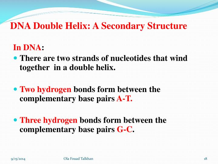 DNA Double Helix: A Secondary Structure