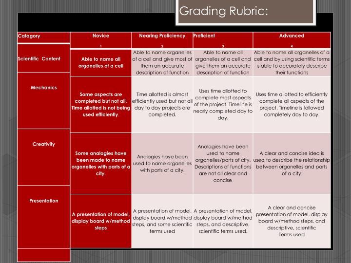 Grading Rubric: