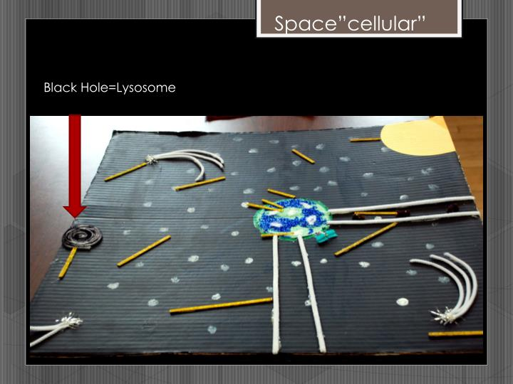 """Space""""cellular"""